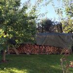 4 Seasons Garden. Trestokker kan brukes som møblering.