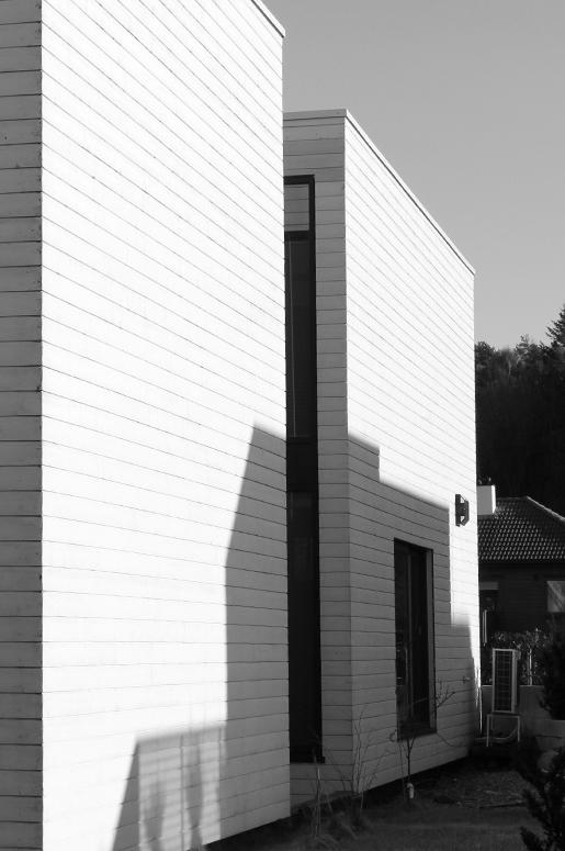 Trefasade, Svarte vinduer Glassfelt mellom boksene danner naturlige overganger.