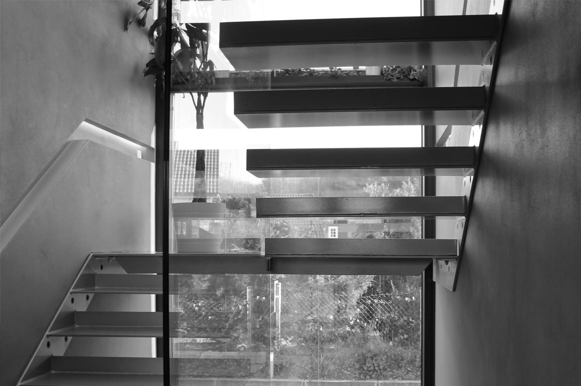 Flyvende trinn krager ut fra betongvegg.