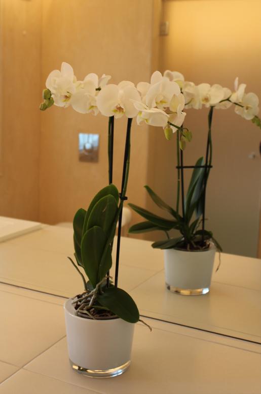 Innredningsdetalj med orkide. Totalrenovering av Bad på Våland .