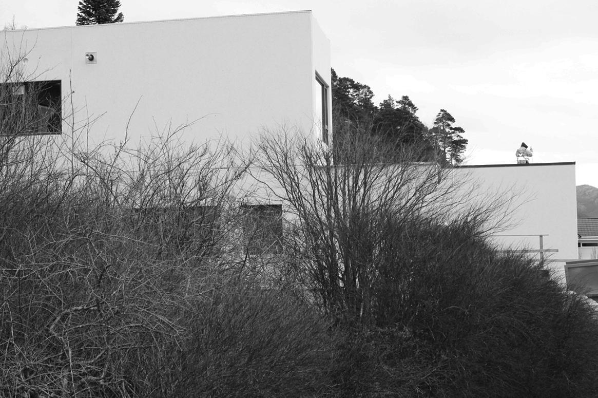 Tvillinghus på Hana vest